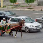 Prima căruță