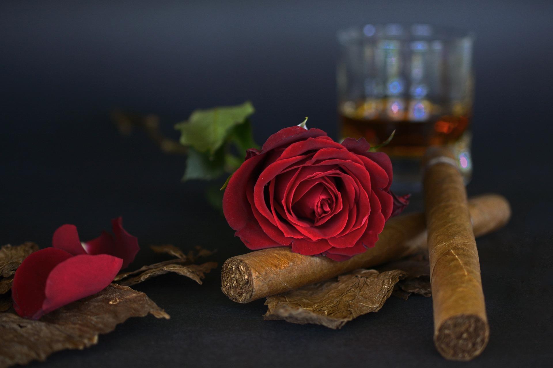 tutunul și alcoolul