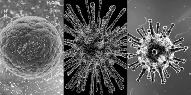 coronavirusul este epidemia care se repetă o dată la 100 de ani