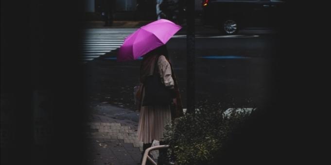 Zilele ploioase