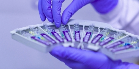 teste pentru Coronavirus