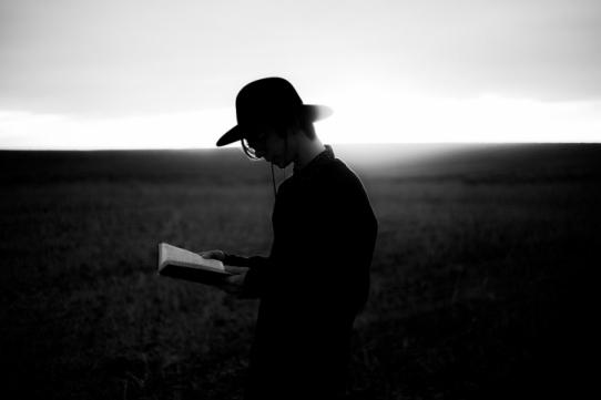 Portretul unui cititor defect