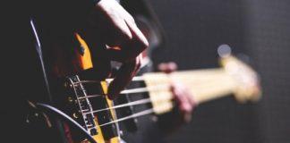 industriei muzicale
