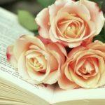 literatură