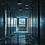Prima lună de cămin în pandemie