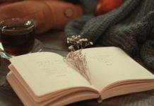 Încă o pagină de adăugat în jurnal
